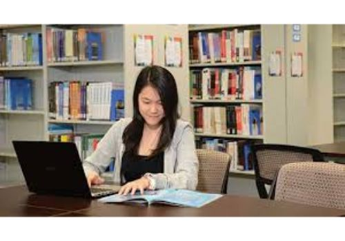 BCA Accounting Applications Courses