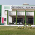 Narendra Deo University of Agriculture & Technology